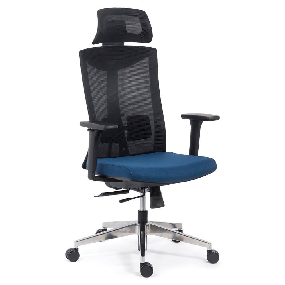 Scaun ergonomic multifunctional SYYT 9501 albastru